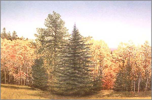 Arnold Alaniz - Mountain Aspens II