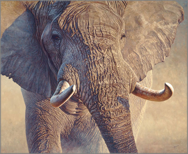 John Banovich - Big Ivory