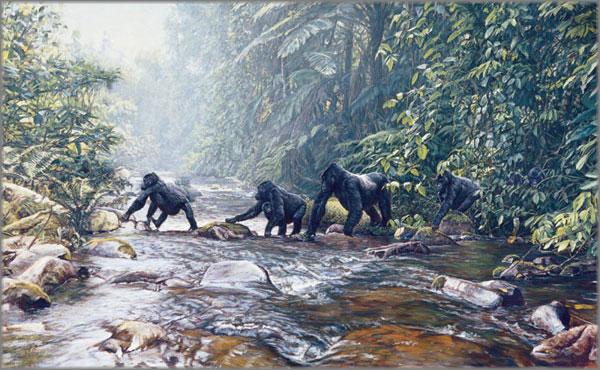 John Banovich - Fleeing Rwanda
