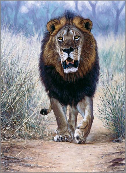 John Banovich - Lionheart