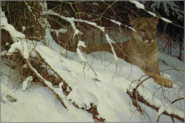 Robert Bateman - Cougar in the Snow