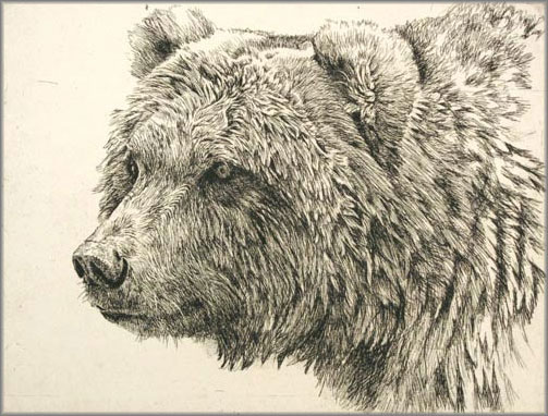 Robert Bateman - Grizzly Bear