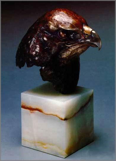 Red-Tailed Hawk Study by Robert Bateman