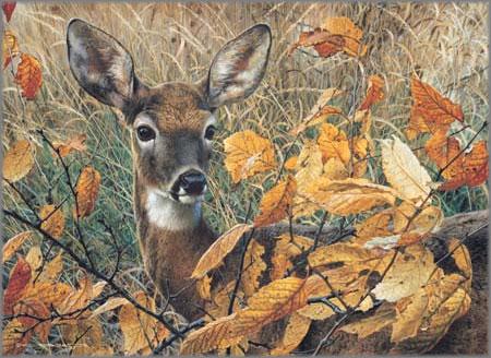 Carl Brenders - Autumn Lady