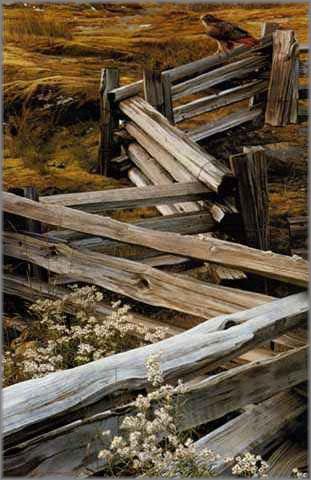 Carl Brenders - Balance of Nature