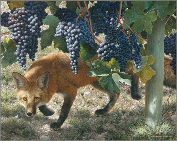 Carl Brenders - Between the Vines - Red Fox