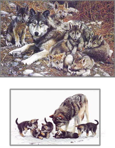 Carl Brenders - Den Mother - Wolf Family - Premier Edition