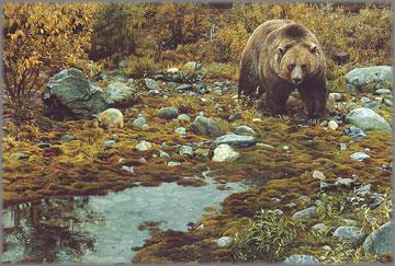 Carl Brenders - Trailblazer - Grizzly Bear