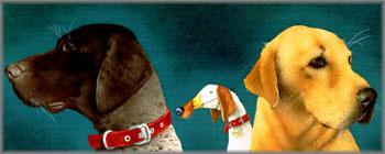 Will Bullas - Bird Dogs