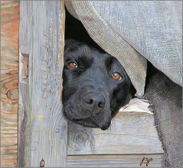 Let Me Out by John Bye