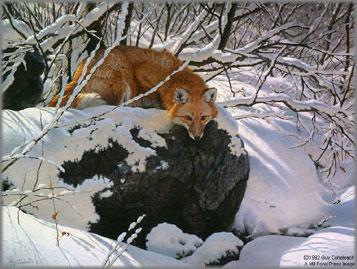 Guy Coheleach - Fox Fire