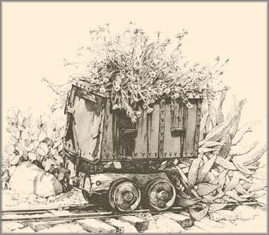 Bev Doolittle - Mining Marigolds