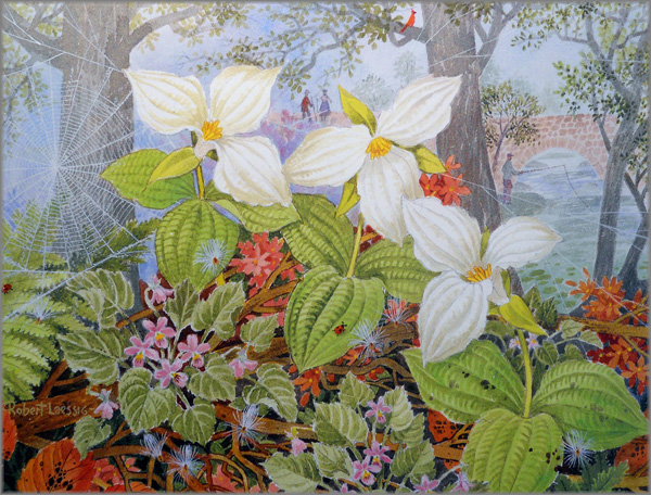 Robert Laessig - Trillium and Lady Bugs