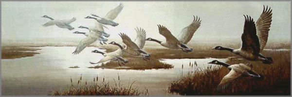Maynard Reece - Misty Flight - Canada Geese