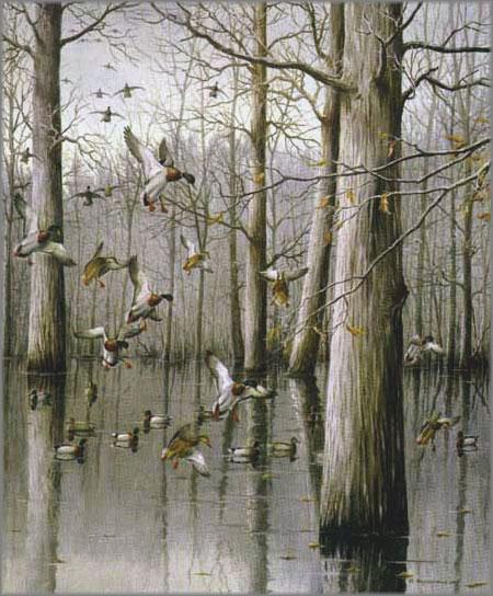 Maynard Reece - Oak Timber - Mallards