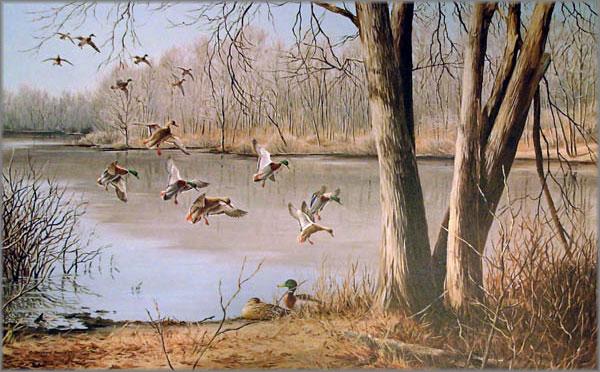 Maynard Reece - Quiet Pond-Mallards
