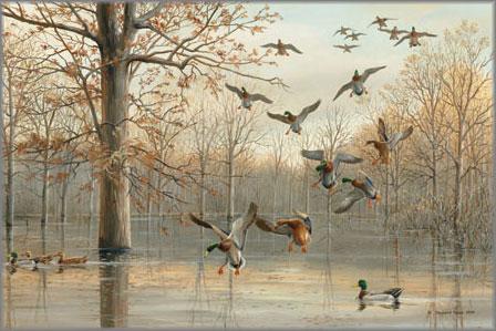 Maynard Reece - Quiet Reflections
