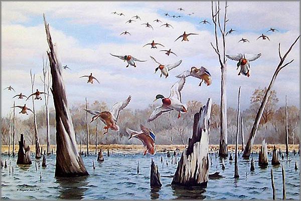 Maynard Reece - Stick-Pond Mallards