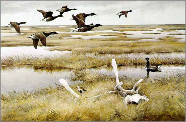 Maynard Reece - Tundra-Black Brant