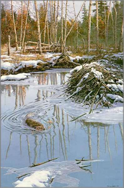 John Seerey-Lester - Before the Freeze-Beaver