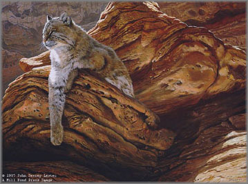 John Seerey-Lester - Cliff Hanger-Bobcat
