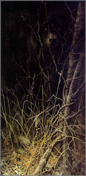 John Seerey-Lester - Dark Encounter