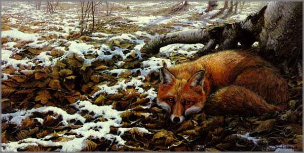 John Seerey-Lester - Early Snow - Red Fox