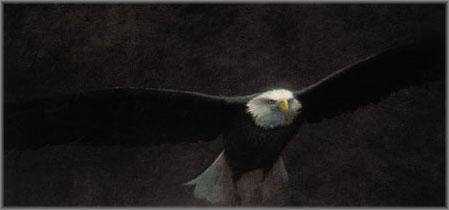 John Seerey-Lester - Freedom II