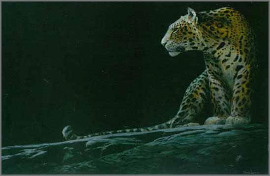 John Seerey-Lester - Full Moon Rising-Leopard