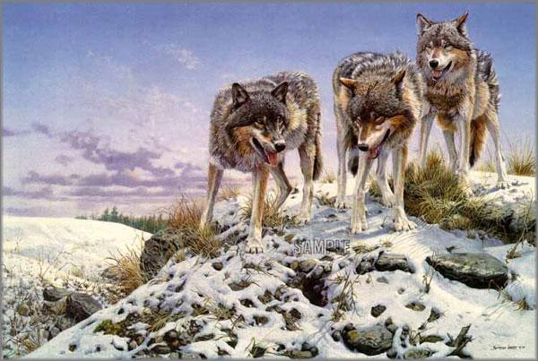 John Seerey-Lester - High Ground - Wolves