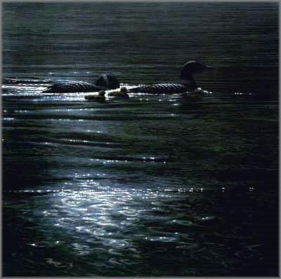 John Seerey-Lester - Loonlight
