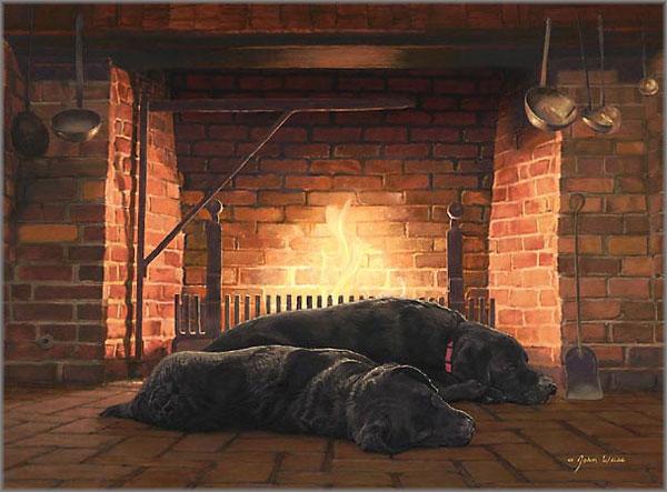 John Weiss - Fireside Friends