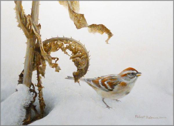 Robert Bateman - Tree Sparrow and Teasal