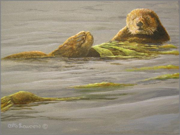 Otto Lawson - King of Kelp - Sea Otter