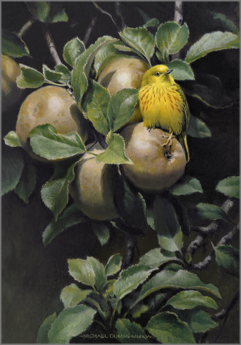 Michael Dumas - High Summer - Yellow Warbler