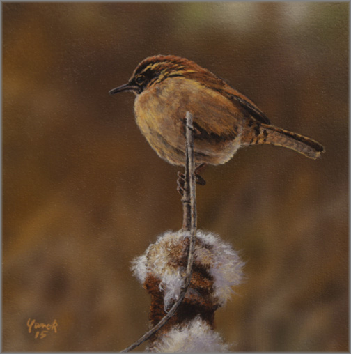 Ed Yanok - Wren and Cattail